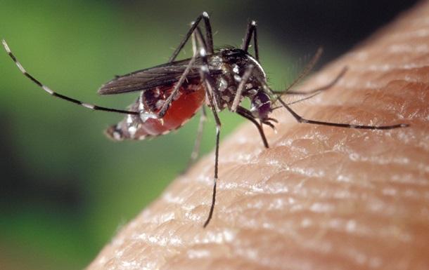 Создана одежда, устойчивая к укусам комаров