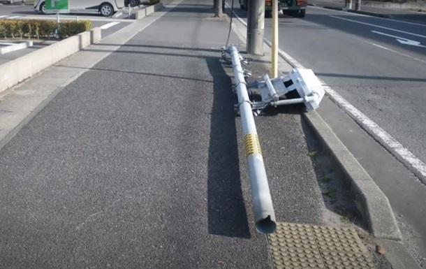 В Японії через собак впав стовп зі світлофором