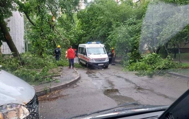Непогода в Киеве: повалены около 150 деревьев