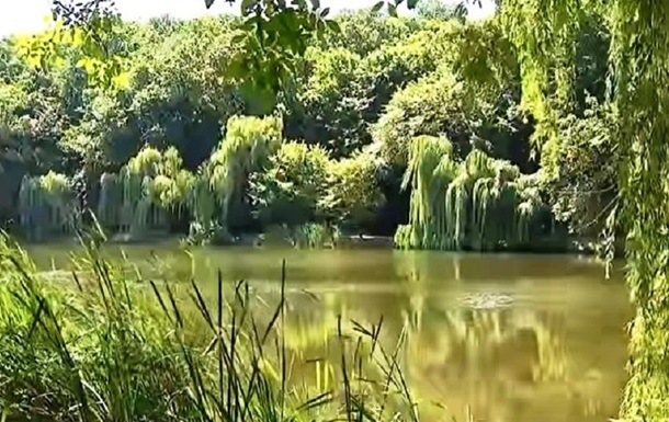 Мор риби і птахів у київському парку: у воді виявлено отруту