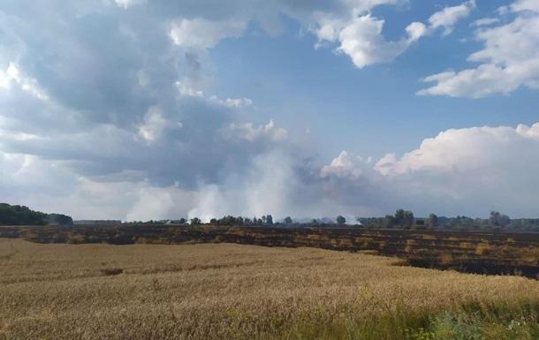 На Чернігівщині пожежа на пшеничному полі