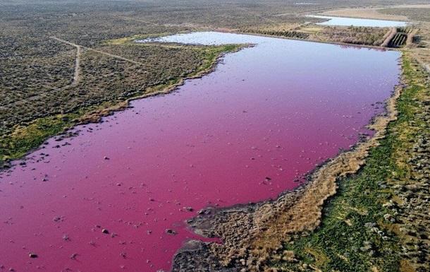 В Аргентине лагуна стала розовой из-за отходов