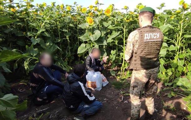 На Харківщині в соняшниках зловили двох  кримінальних авторитетів
