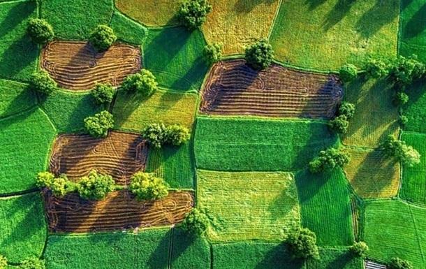 Кабмин озвучил среднюю цену за гектар земли