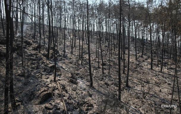 В Турции продолжаются семь крупных пожаров