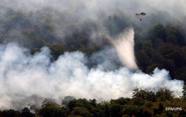 Украина готова помочь Греции и Албании в борьбе с пожарами - МИД