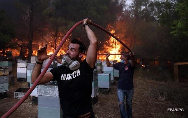В Греции полыхают масштабные пожары. Фоторепортаж