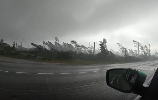 Туристы сняли видео урагана, вырывавшего деревья
