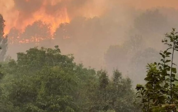 В Северной Македонии бушуют лесные пожары