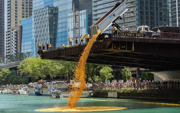 В Чикаго в реку сбросили 70 тысяч резиновых уток