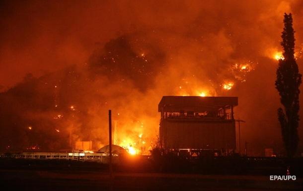 В результаті лісових пожеж в Алжирі загинули 42 людини