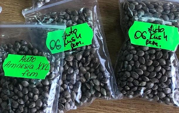 Митниця знайшла в посилці тисячі насінин конопель