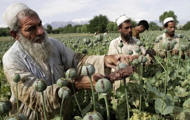 Талібан пообіцяв покінчити з виробництвом наркотиків у країні