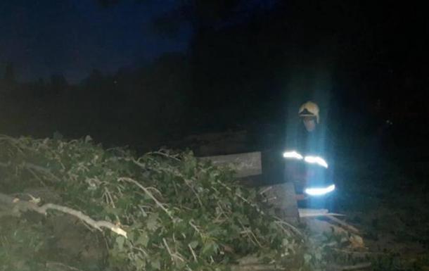 У Вінниці ураган валив дерева, постраждала жінка