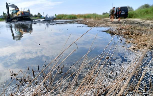 В Одеській області на Тилігульському лимані масово гине риба