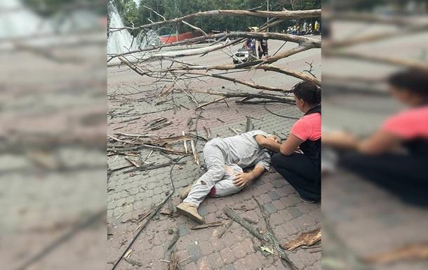 У Дніпрі на чоловіка впало дерево: у нього зламані ноги