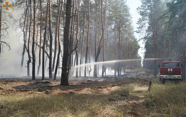 У Луганській області спалахнула лісова пожежа