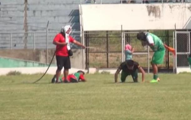 В Боливии во время футбольного матча на игроков напали пчелы
