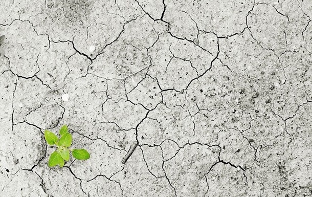 У Європі почастішають екстремальні посухи - вчені