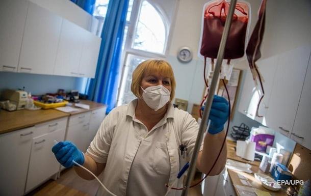 На Буковине женщина умерла после укусов шершней - СМИ