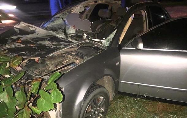 Столкнулся с лошадью и слетел в кювет: в ДТП погиб житель Буковины