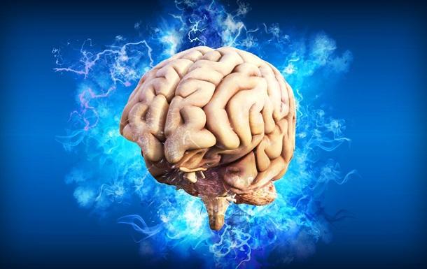 Вчені виявили в мозку центр прийняття рішень