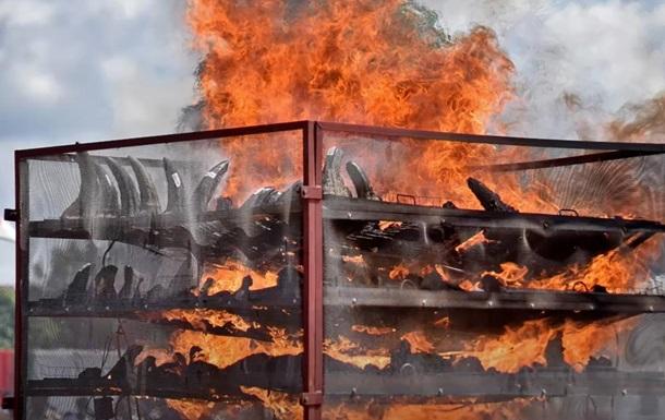 В Индии сожгли 2,5 тысячи рогов носорогов