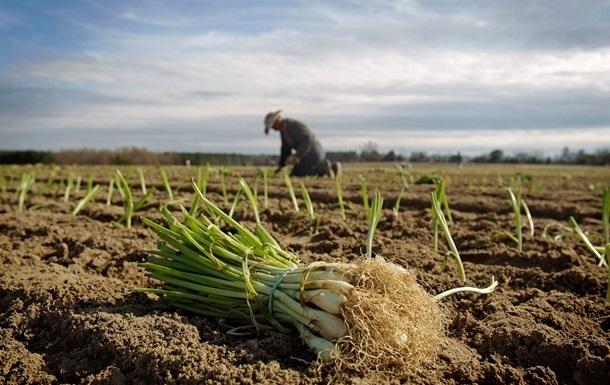 Рада затвердила грошову допомогу для молодих фермерів