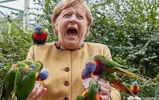 Вулкан і Меркель з папугами: фото дня