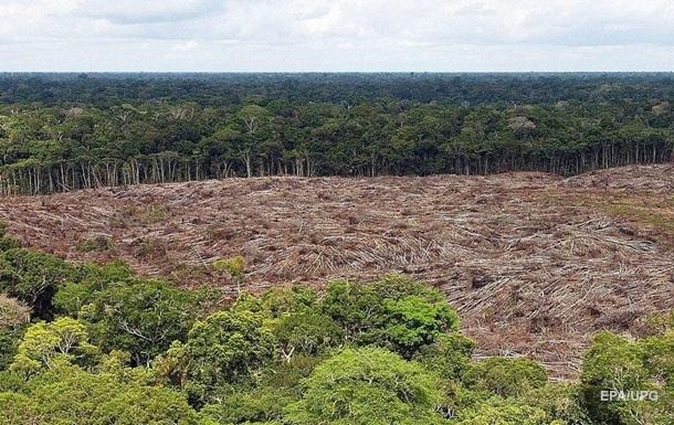 Джунглі Амазонії накрила небувала посуха