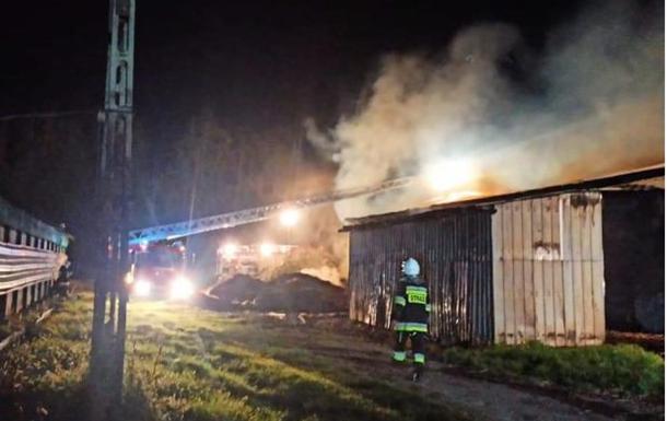 Поджог птицефермы и взлом магазина: в Польше задержали трех украинцев