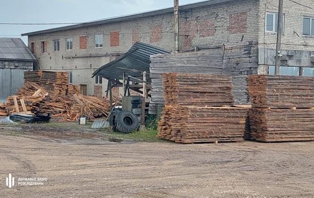 На Львівщині група лісників незаконно вирубала лісу на 2,5 млн
