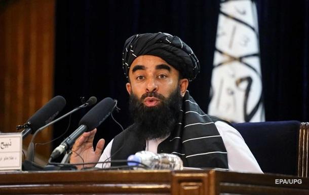 Талибы заявили о переговорах с Россией о признании их правительства