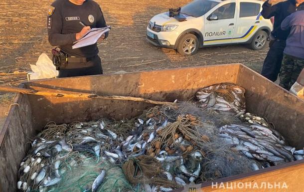 Мільйонний збиток: на Одещині затримали браконьєрів з великим уловом кефалі