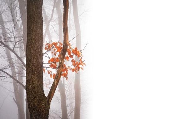 Праздники 21 октября: история, традиции, именины