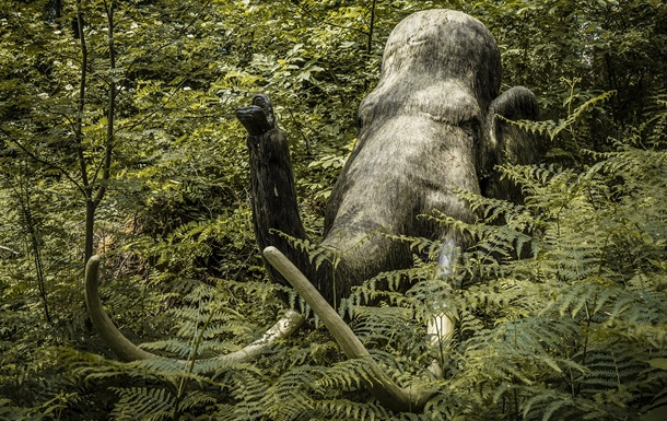 Ученые назвали главную причину вымирания мамонтов