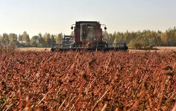 Украина собрала самый большой урожай гречки за последние годы