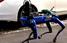 Собака-робот патрулює вулиці Бронксу