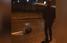 В Харькове по улице гулял дикий бобер